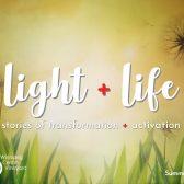Light + Life: Summer Series
